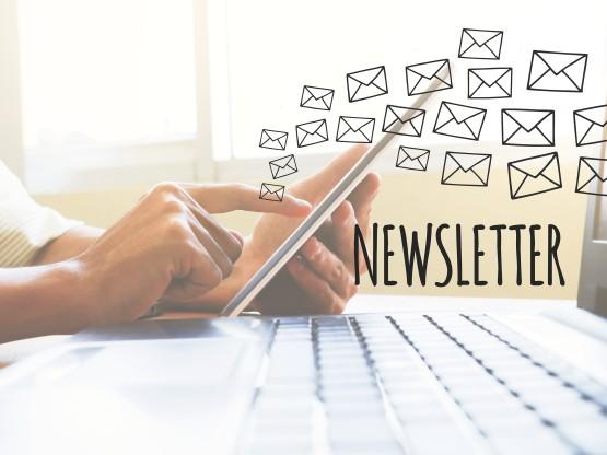newsletter-marketeersteam